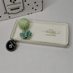 Kimdio Succulents Jewelry Dish Trinket Tray